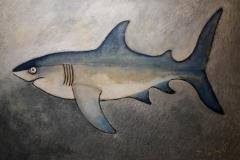daniel-lambert-poisson-Requin_82x60_ws1037568336